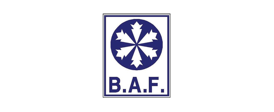 brianaflynn-logo